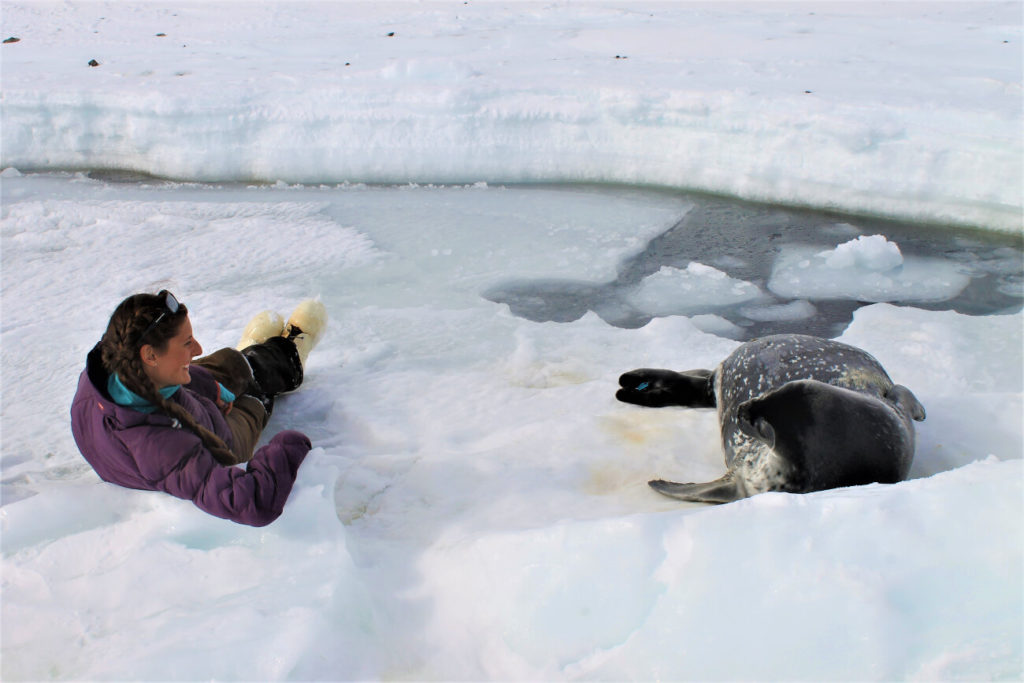 Photo of Weddell seal with UCSC alumna Roxanne Beltran